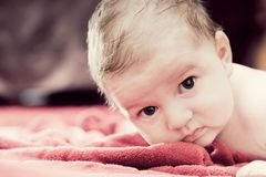 Cute 3 months baby lying on red blanket Stock Photography