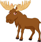 Cute moose cartoon Stock Photo