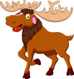 Cute moose cartoon for you design Royalty Free Stock Images