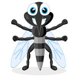 Cute mosquito Royalty Free Stock Image