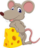 Cute mouse cartoon. Of illustration Stock Image