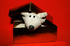 Cute mouse in the gold box. Cute toy's mouse in the gold gift box stock images