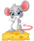 Cute mouse standing above a cheese Stock Photo