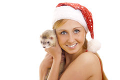 Cute Mrs. Santa with ferret. Stock Photography