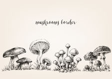 Cute mushrooms drawing Stock Photos