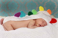 Cute new born boy Royalty Free Stock Photos