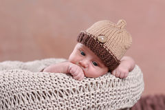 Cute new born boy Stock Images