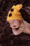 Cute new born boy Stock Image