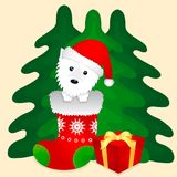 Cute New Year puppy in Christmas sock vector illustration