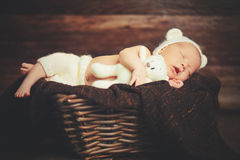 Cute newborn baby in bear hat sleeps in basket with toy teddy be Royalty Free Stock Photography