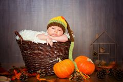 Cute newborn baby boy with knitted hat in a basket Stock Photos