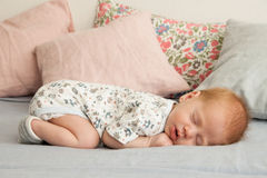 Cute newborn baby boy sleeping on a blanket Stock Photos