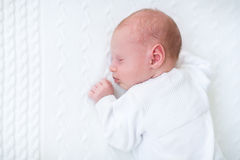 Cute newborn baby boy sleeping on knitted blanket Stock Images
