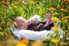 Cute newborn baby boy, sleeping peacefully in basket in garden Royalty Free Stock Photos