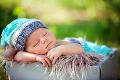 Cute newborn baby boy, sleeping peacefully in basket in garden Stock Photos
