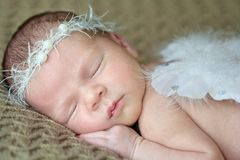 Newborn baby with angel wings stock image