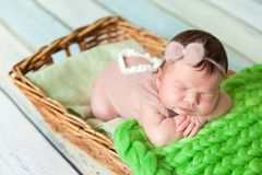 Cute newborn baby girl in a pink knit romper. Sleeping on a green chunky knit blanket in a basket Royalty Free Stock Images