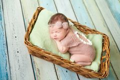 Cute newborn baby girl in a pink knit romper. Sleeping on a felted green blanket in a basket Stock Images