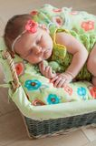 Cute newborn baby girl in a pink knit romper sleeping on a felted green blanket in a basket.  Royalty Free Stock Photo