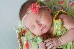 Cute newborn baby girl in a pink knit romper sleeping on a felted green blanket in a basket.  Stock Photo