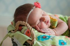 Cute newborn baby girl in a pink knit romper sleeping on a felted green blanket in a basket.  Stock Image