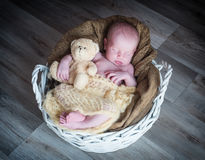 Cute newborn baby girl Stock Photography