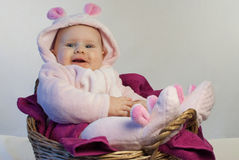 Cute newborn baby in a rabbit suit. In the basket Royalty Free Stock Images