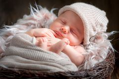 Cute newborn baby sleeping in the basket with blanket. Closeup of cute newborn baby sleeping in the basket with blanket Stock Image