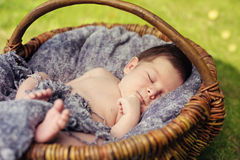 Cute newborn baby sleeping in basket Stock Images