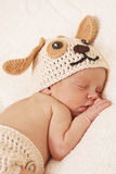 Cute newborn baby sleeps. In a knitted hat dogs royalty free stock images