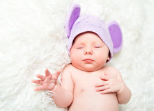 Cute newborn baby sleeps in a hat with ears Royalty Free Stock Photo