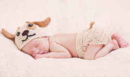 Cute newborn baby sleeps. In a knitted hat dogs royalty free stock image