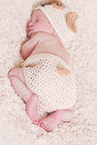 Cute newborn baby sleeps. In a knitted hat dogs focus on legs stock photos