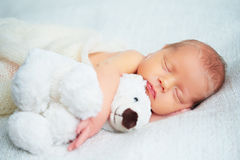 Cute newborn baby sleeps with toy teddy bear. Cute newborn baby sleeps with a toy teddy bear white royalty free stock image