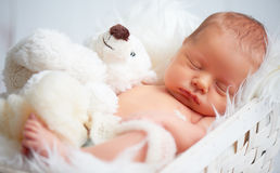 Cute newborn baby sleeps with toy teddy bear Stock Photo
