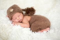 Cute newborn baby sleeps with a toys Stock Images