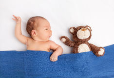Cute newborn baby with a teddy bear under a blanket Royalty Free Stock Image