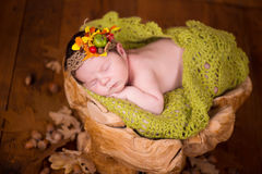 A cute newborn baby in a wreath of cones and berries sleeps on a stub. Stock Image