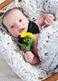 Cute newborn gentleman with flowers Stock Photo