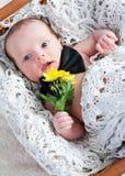 Cute newborn gentleman with flowers. Cute newborn gentleman with yellow flowers lay in a basket stock photo