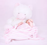 Cute newborn girl Royalty Free Stock Image