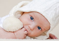 Cute newborn. In hat and scarf stock photography