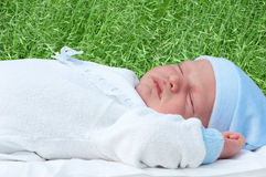 Cute newborn sleeping Royalty Free Stock Photos