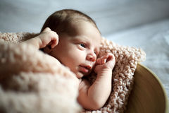 Cute newborn sleeping in a beige plate Stock Photography