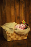 A cute newborn in a wreath of berries lies in a basket. Stock Photos
