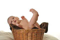 Cute newly-born baby in the basket Royalty Free Stock Photos