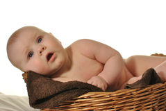 Free Cute Newly-born Baby In The Basket Stock Photography - 28452752