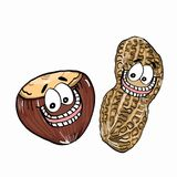 Cute Nut icon illustration drawing. And white background Royalty Free Stock Images