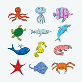 Cute ocean hand drawn animals. On a light background. Vector illustration of a jellyfish, octopus, coral fish, turtle, shark, dolphin, whale, seahorse, shrimp royalty free illustration