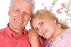 Cute old couple. Cute elderly couple smiling on a white Royalty Free Stock Photos